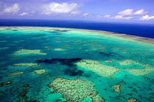 great-barier-reef-down